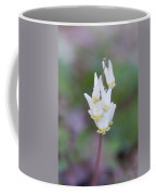 Dutchman's Breeches Coffee Mug