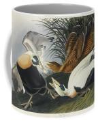 Eider Duck Coffee Mug