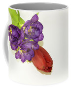Freesia And Tulip Coffee Mug