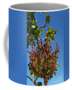 Kerman Coffee Mug