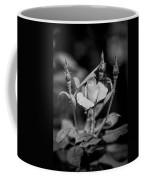 Knockout Roses Painted Bw Coffee Mug