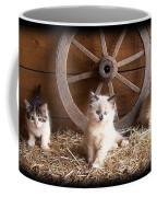 3 Little Kittens With The Wagon Wheel. Coffee Mug