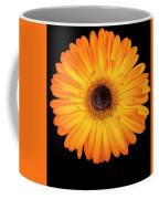 Macro Shot Of Flower Coffee Mug