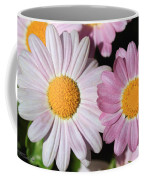 Marguerite Daisy Named Petite Pink Coffee Mug