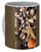 Mix Group Of Seashells Coffee Mug