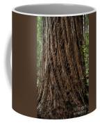 Montgomery Woods State Natural Reserve Coffee Mug