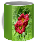 Red Lily Pair Coffee Mug