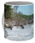 Palmetto Forest On Hunting Island Beach Coffee Mug