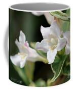 Pink Splash Variegated Weigela Coffee Mug