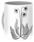 Pitcher Plant Flowers, X-ray Coffee Mug