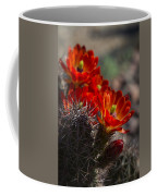 Red Hot Hedgehog  Coffee Mug