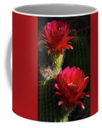 Red Torch Cactus  Coffee Mug