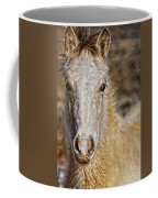 Red Willow Pony Coffee Mug
