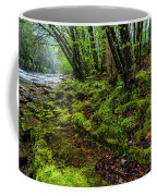 Spring Along Elk River Coffee Mug