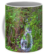 Spring In The Gorge Coffee Mug