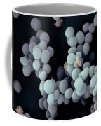 Staphylococcus Saccharolyticus Coffee Mug