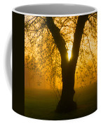 Sunrise Trees Fog Coffee Mug