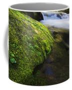 Sweet Creek Oregon 12 Coffee Mug