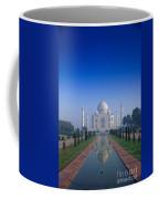 Taj Mahal View Coffee Mug