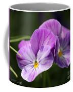 Viola Named Columbine Coffee Mug