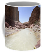 Wadi Zered Western Jordan Coffee Mug