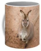 Wallaby Outside By Itself Coffee Mug