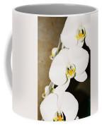 3 White Orchids Coffee Mug