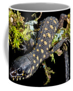 Yellow Spotted Tropical Night Lizard Coffee Mug
