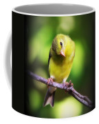 3008 - Goldfinch Coffee Mug