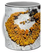 31 Coffee Mug