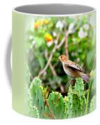 3546 - Tanager Coffee Mug