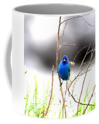 3553-015 - Indigo Bunting Coffee Mug