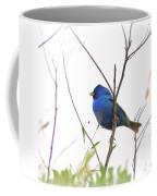 3563-006 - Indigo Bunting Coffee Mug