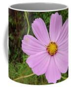 Australia - Mauve Flowers Coffee Mug