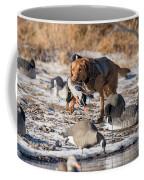 Duck And Goose Hunting Stock Photo Image Coffee Mug