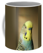 @modelinstagram Coffee Mug