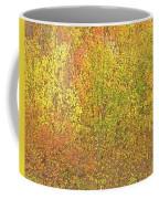3991 Autumn Profusion Coffee Mug