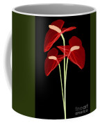 Anthurium Flowers, X-ray Coffee Mug
