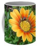 Australia - Fly Feeding On Pollen Coffee Mug