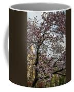 Central Park Spring Coffee Mug