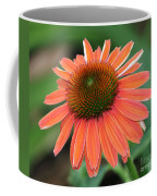 Coneflower Coffee Mug