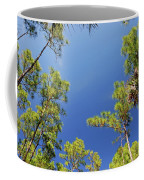 4- Cypress Trees Coffee Mug