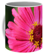 Fuchsia Pink Zinnia From The Whirlygig Mix Coffee Mug