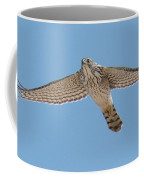Glide Coffee Mug