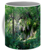 Gormon Falls Colorado Bend State Park.  Coffee Mug