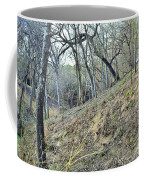 Hill Country Coffee Mug