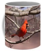 Img_0001 - Northern Cardinal Coffee Mug