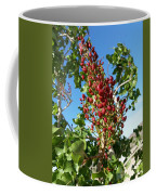 Kerman Coffee Mug