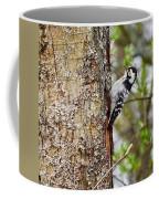 Lesser Spotted Woodpecker Coffee Mug