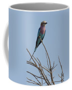 Lilac Breasted Roller On The Hunt Coffee Mug